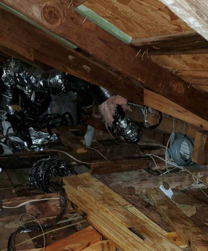 Attic Damage in Austin